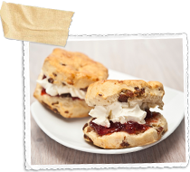 Fresh scones filled with cream and jam on a plate