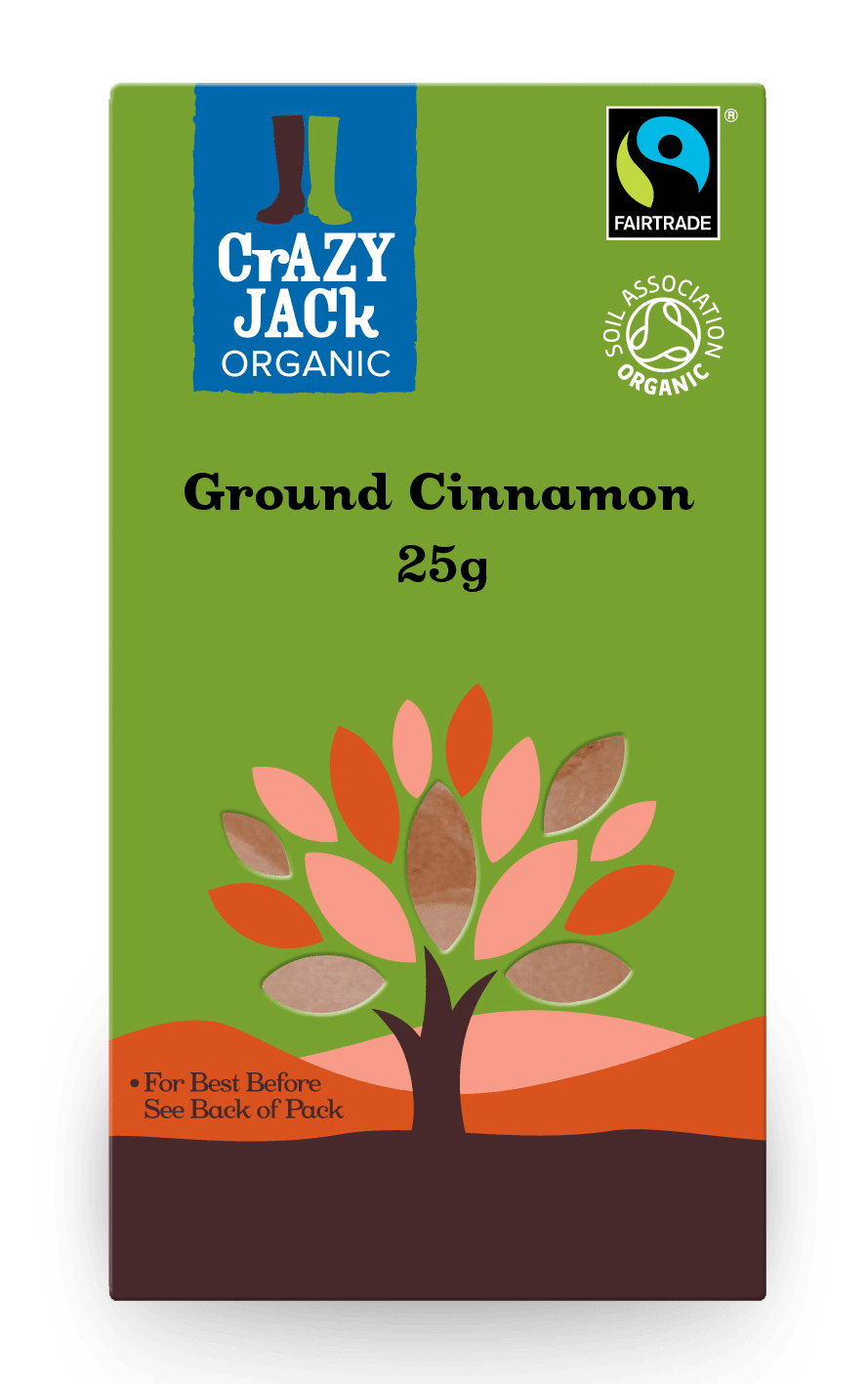 Packaging for 25g of ground cinnamon
