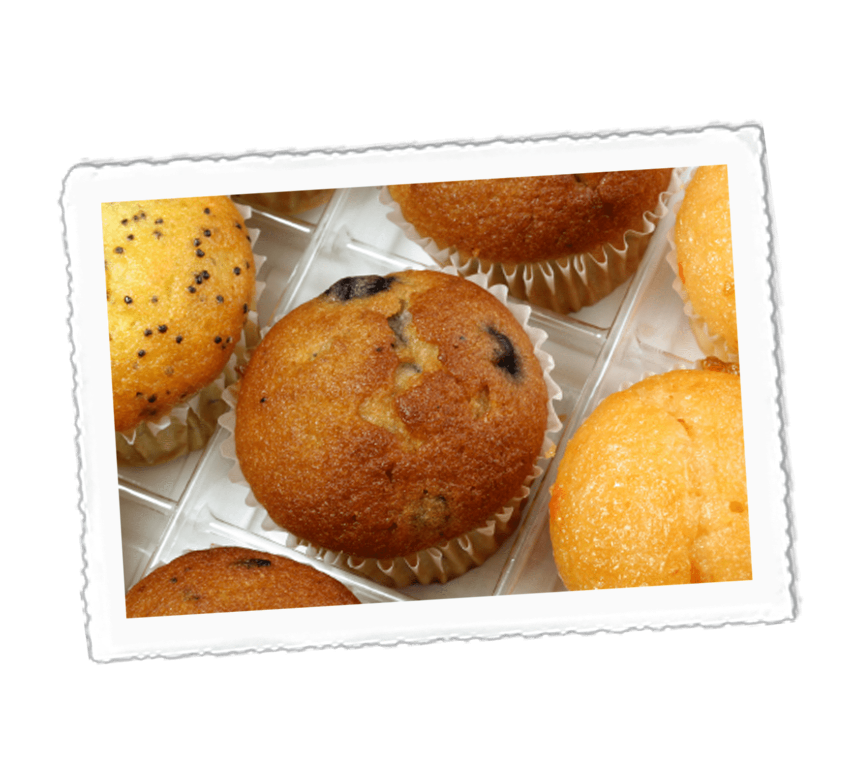 Crazy Jack's Magic Blueberry Muffins