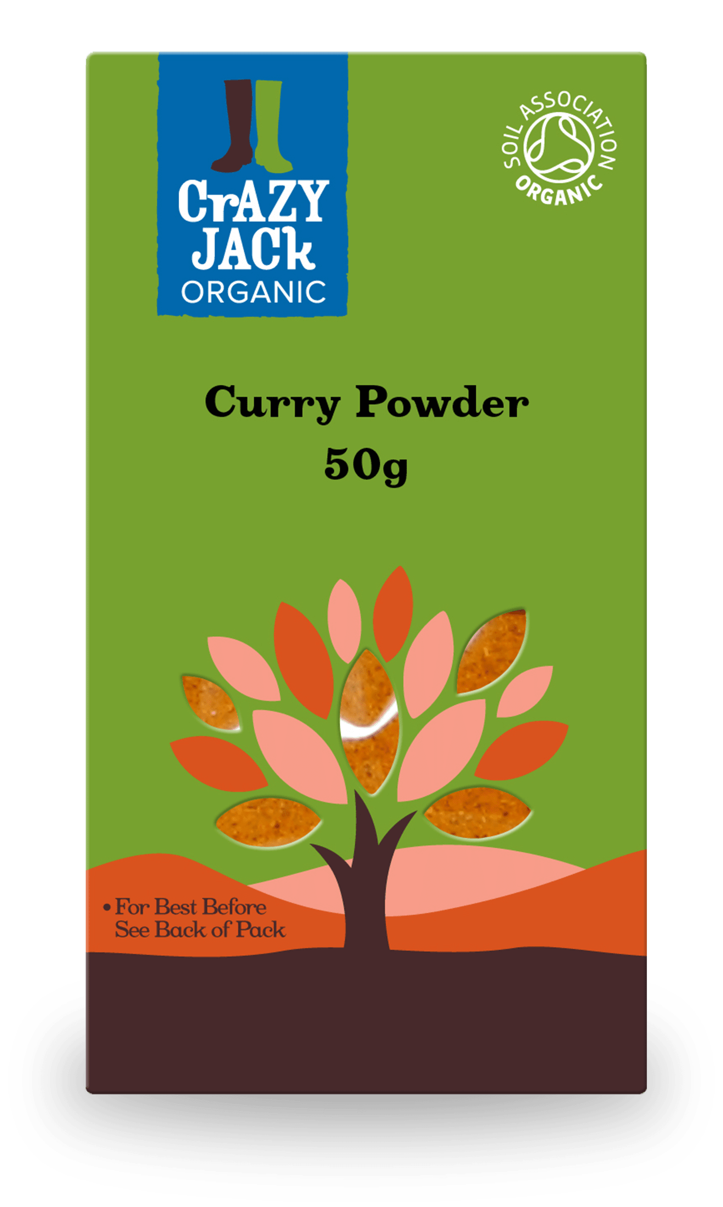50g packet of organic curry powder