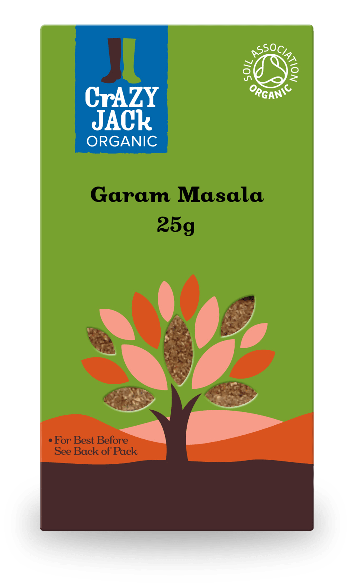 25g packet of garam masala
