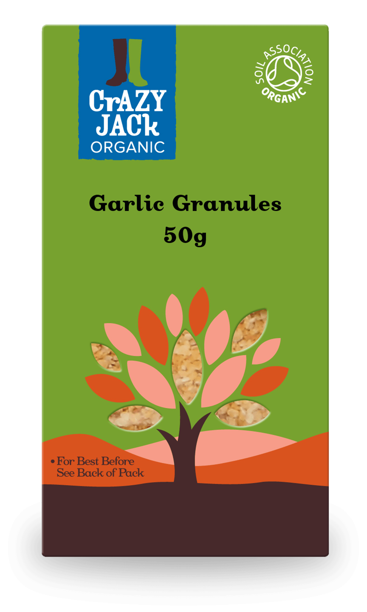 50g packet of garlic granules