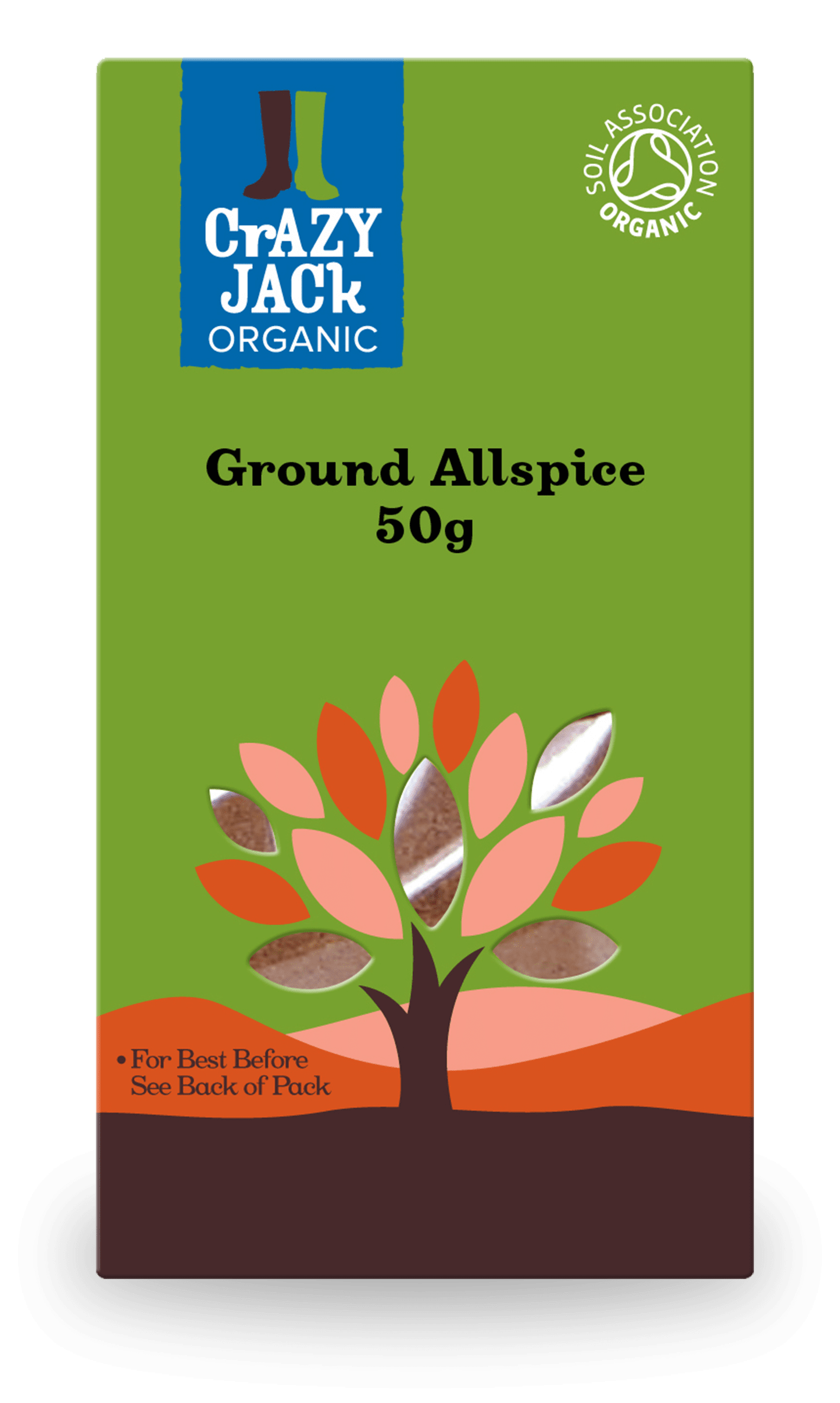50g packet of organic ground allspice