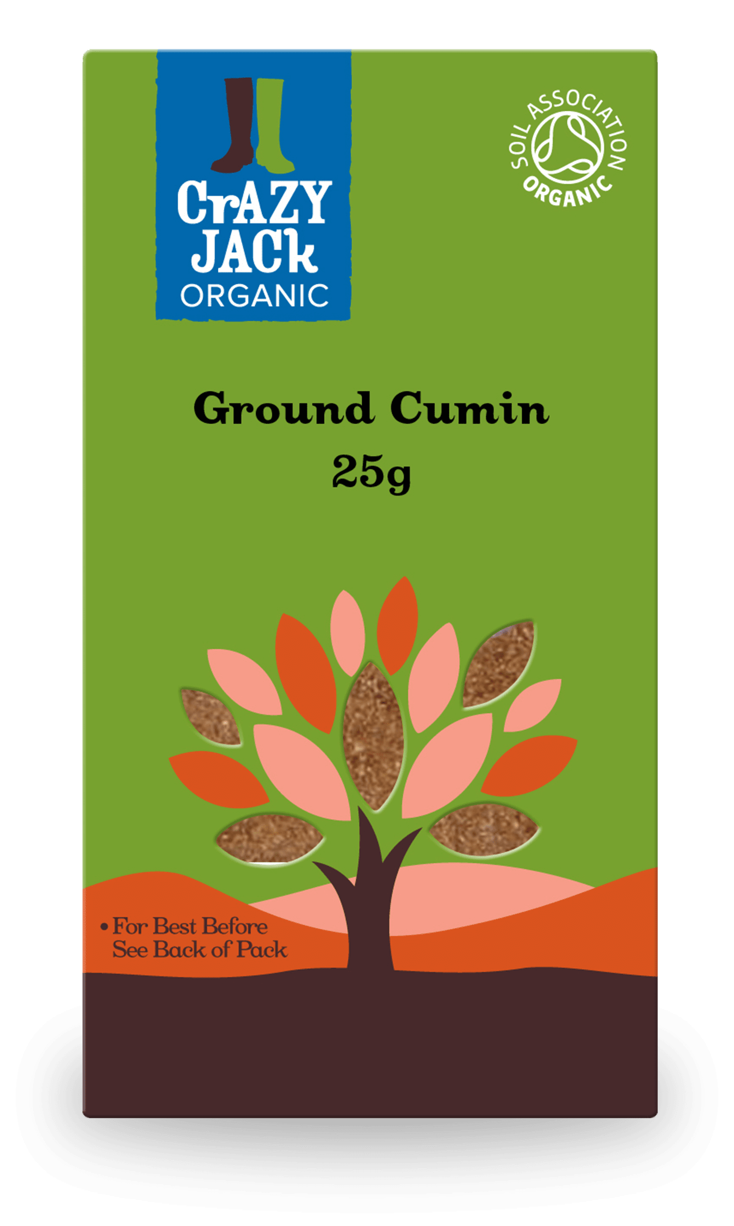 25g packet of organic ground cumin