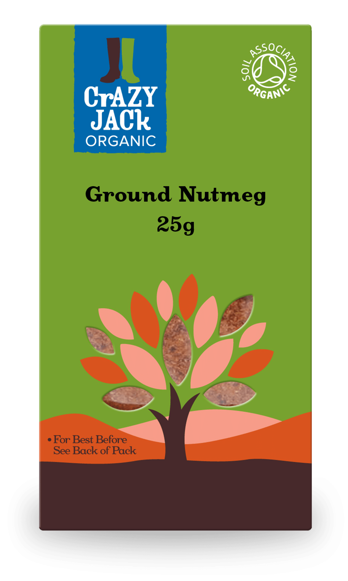 25g packet of organic ground nutmeg
