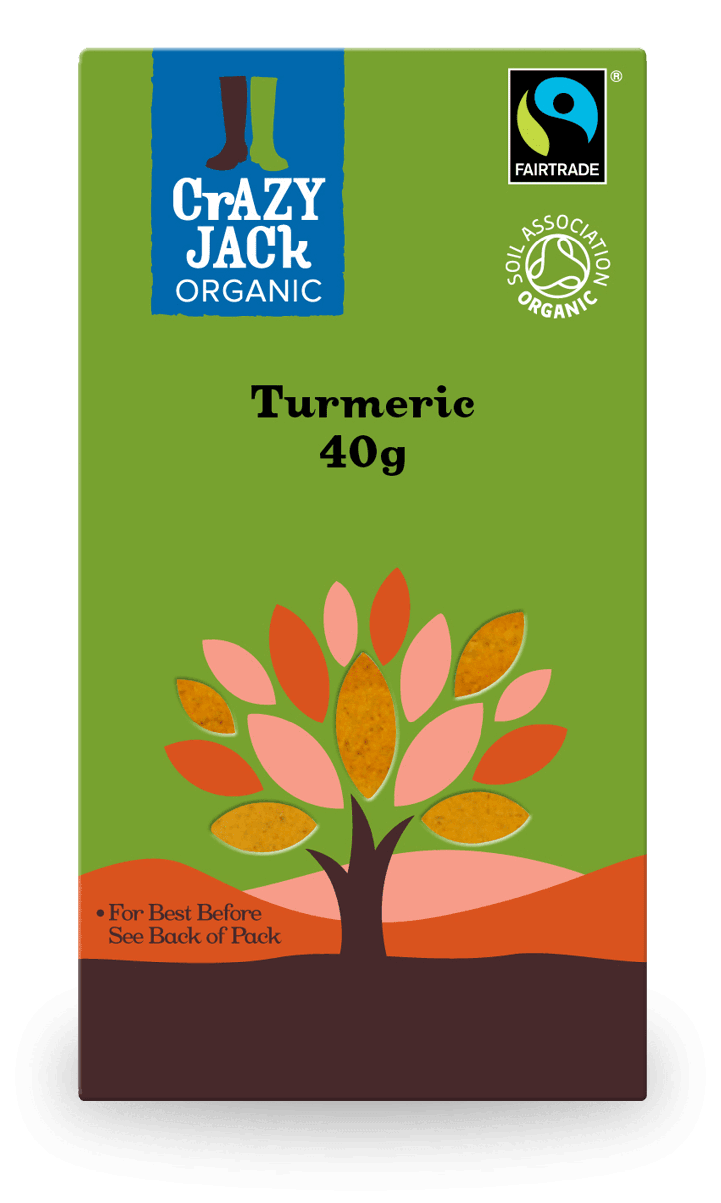 40g packet of organic turmeric